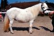 Sisska II